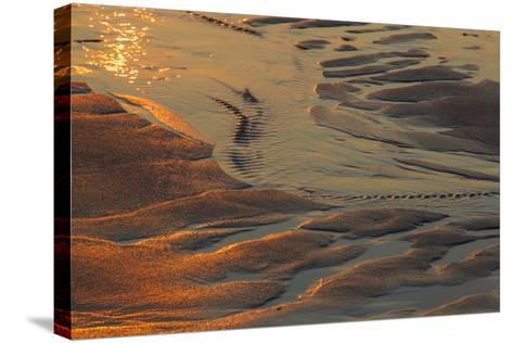 Patterns in the Sand at Coast Guard Beach in the Cape Cod National Seashore-Jerry and Marcy Monkman-Stretched Canvas Print