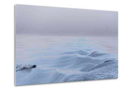 Washington State, Puget Sound Wake Patterns on Calm Water Reflecting Moody Light. Dense Fog-Trish Drury-Metal Print