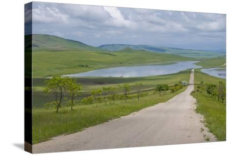 Country Road Leading Through Meadows, Davit Gareja, Georgia, Caucasus-Michael Runkel-Stretched Canvas Print