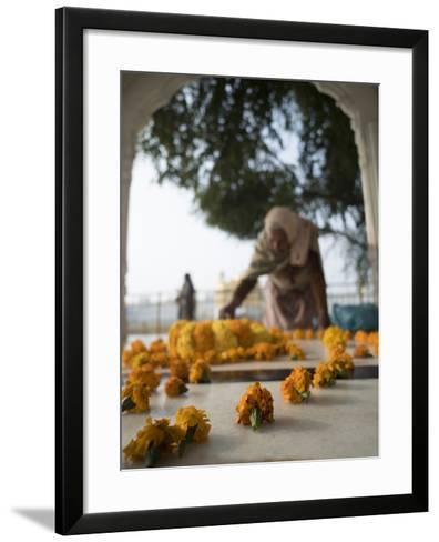 Religious Flower Offerings, at Golden Temple in Amritsar, Punjab, India-David H^ Wells-Framed Art Print