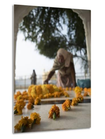 Religious Flower Offerings, at Golden Temple in Amritsar, Punjab, India-David H^ Wells-Metal Print