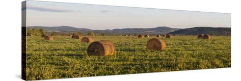 Hay Bales , the International Appalachian Trail. Merrill, Near Smyrna Mills-Jerry and Marcy Monkman-Stretched Canvas Print