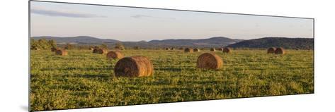 Hay Bales , the International Appalachian Trail. Merrill, Near Smyrna Mills-Jerry and Marcy Monkman-Mounted Photographic Print