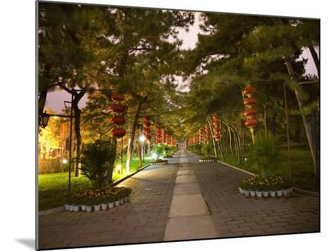 Red Lanterns Temple of the Sun Park, Beijing, China Night Shot-William Perry-Mounted Photographic Print