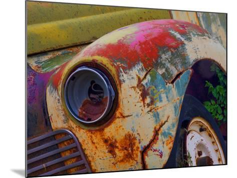 Detail of an Abandoned Chevrolet Truck Headlight-Mallorie Ostrowitz-Mounted Photographic Print