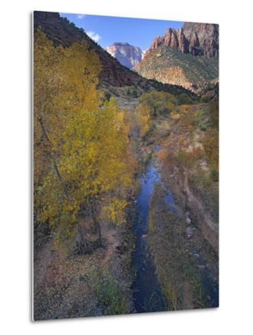 Sunset at West Temple and Pine Creek, Zion National Park, Utah-Tim Fitzharris-Metal Print