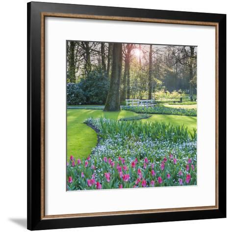 Sunlit Woodland Garden with Tulips-Anna Miller-Framed Art Print