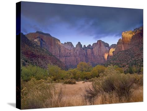 Towers of the Virgin, Zion National Park, Utah-Tim Fitzharris-Stretched Canvas Print