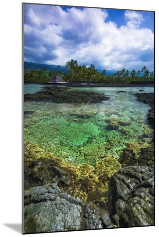 Coral Reef and Heixu, Pu'Uhonua O Honaunau National Historic Park, Kona Coast, Hawaii, Usa-Russ Bishop-Mounted Photographic Print
