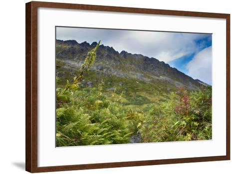Alaska, Hatchers Pass-Savanah Stewart-Framed Art Print