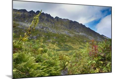 Alaska, Hatchers Pass-Savanah Stewart-Mounted Photographic Print