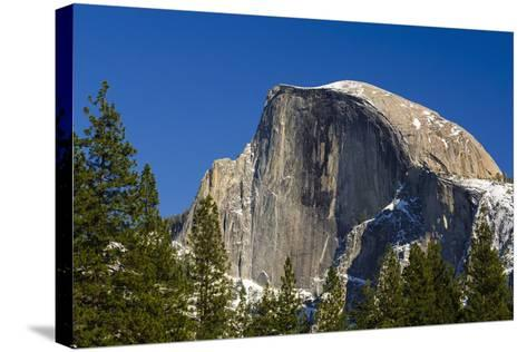 Afternoon Light on Half Dome, California, Usa-Russ Bishop-Stretched Canvas Print