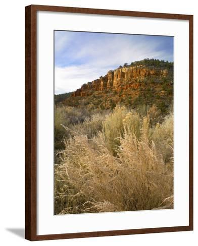 Frost in the Three Lakes Canyon, Utah-Tim Fitzharris-Framed Art Print