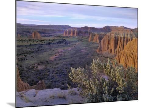 Upper Cathedral Valley, Capitol Reef National Park, Utah-Tim Fitzharris-Mounted Photographic Print