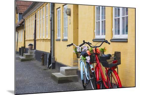 Denmark, Zealand, Soro, Traditional Danish Houses, Sogade Street-Walter Bibikow-Mounted Photographic Print