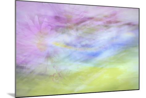 Washington State, Seabeck. Abstract of Flowers in Motion-Jaynes Gallery-Mounted Photographic Print