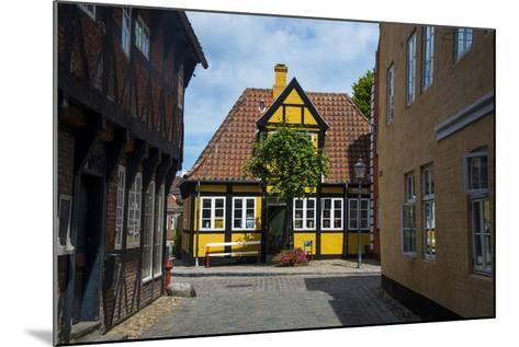 Ancient Houses in Ribe, Denmark's Oldest Surviving City, Jutland, Denmark-Michael Runkel-Mounted Photographic Print
