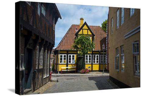 Ancient Houses in Ribe, Denmark's Oldest Surviving City, Jutland, Denmark-Michael Runkel-Stretched Canvas Print
