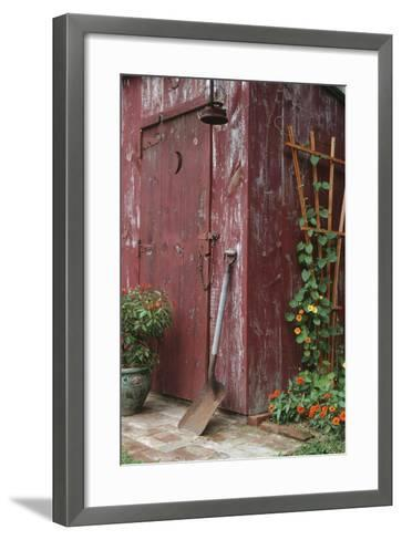 Outhouse Garden Shed Nasturtium Tropaeoium Majus and Thunbergia Lemon Star-Richard and Susan Day-Framed Art Print