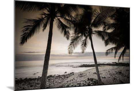 Coconut Palms and Surf at Dusk, Kailua-Kona, Hawaii, Usa-Russ Bishop-Mounted Photographic Print