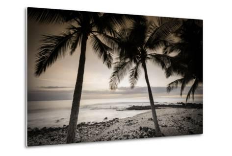 Coconut Palms and Surf at Dusk, Kailua-Kona, Hawaii, Usa-Russ Bishop-Metal Print