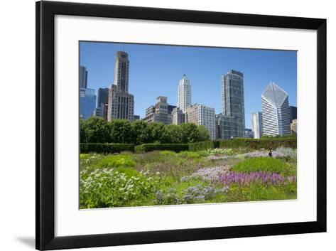 Lurie Garden in Millennium Park, Chicago, with Michigan Avenue Skyline-Alan Klehr-Framed Art Print