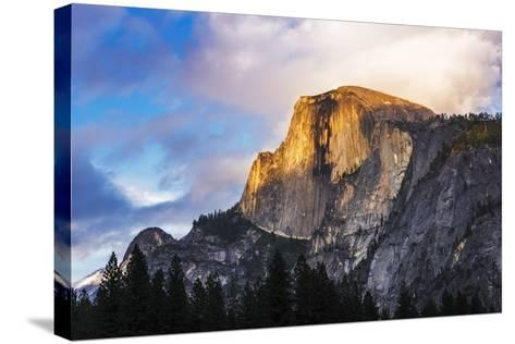 Evening Light on Half Dome, California, Usa-Russ Bishop-Stretched Canvas Print