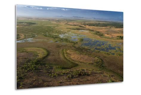 Flooded Savanna Rupununi, Guyana-Pete Oxford-Metal Print