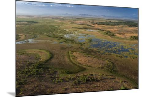 Flooded Savanna Rupununi, Guyana-Pete Oxford-Mounted Photographic Print