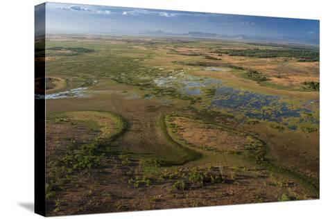 Flooded Savanna Rupununi, Guyana-Pete Oxford-Stretched Canvas Print