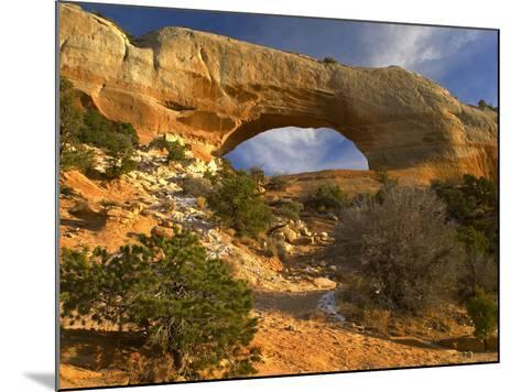 Wilson Arch, Utah-Tim Fitzharris-Mounted Photographic Print