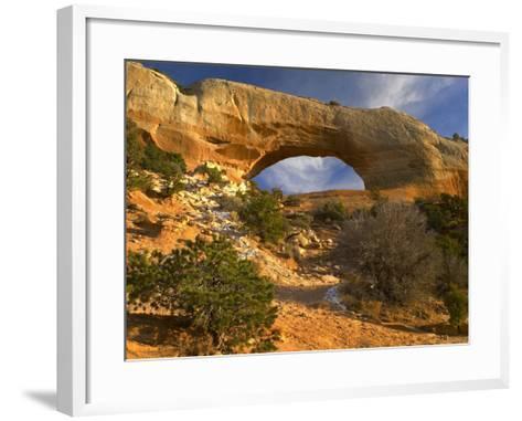 Wilson Arch, Utah-Tim Fitzharris-Framed Art Print