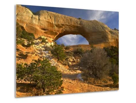 Wilson Arch, Utah-Tim Fitzharris-Metal Print