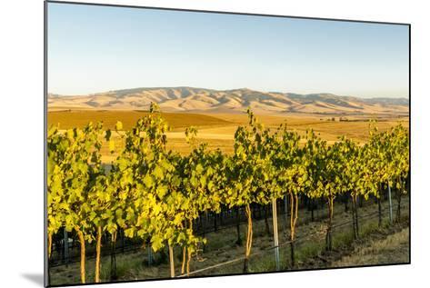 Washington State, Walla Walla. the Blue Mountains Overlook-Richard Duval-Mounted Photographic Print