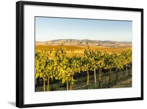 Washington State, Walla Walla. the Blue Mountains Overlook-Richard Duval-Framed Art Print
