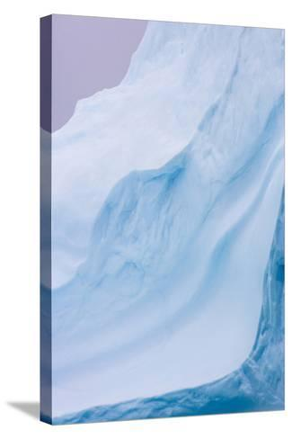 South Georgia Island. Iceberg Shapes-Jaynes Gallery-Stretched Canvas Print