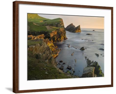 Foula Part, Shetland Islands-Martin Zwick-Framed Art Print