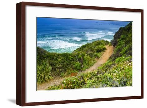 The Trail to Sand Dollar Beach, Los Padres National Forest, Big Sur, California, Usa-Russ Bishop-Framed Art Print