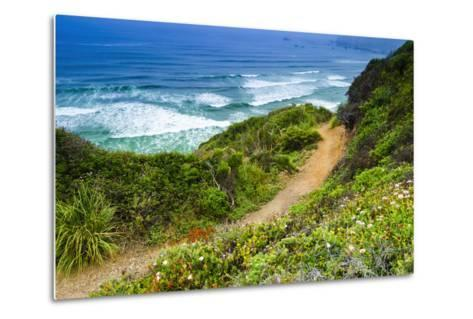 The Trail to Sand Dollar Beach, Los Padres National Forest, Big Sur, California, Usa-Russ Bishop-Metal Print
