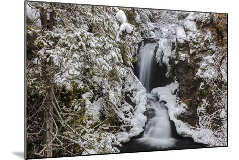 Falls Creek in Winter Near Nelson, British Columbia, Canada-Chuck Haney-Mounted Photographic Print