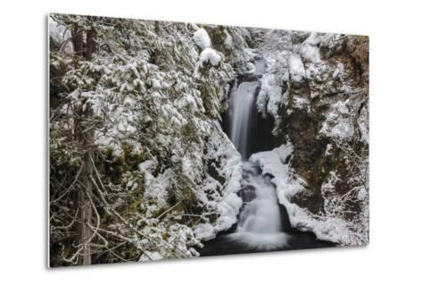 Falls Creek in Winter Near Nelson, British Columbia, Canada-Chuck Haney-Metal Print