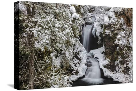 Falls Creek in Winter Near Nelson, British Columbia, Canada-Chuck Haney-Stretched Canvas Print