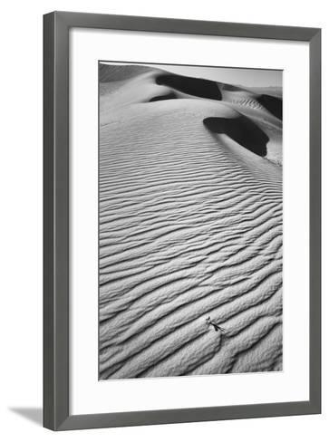 California, Mojave Trails National Monument-Judith Zimmerman-Framed Art Print