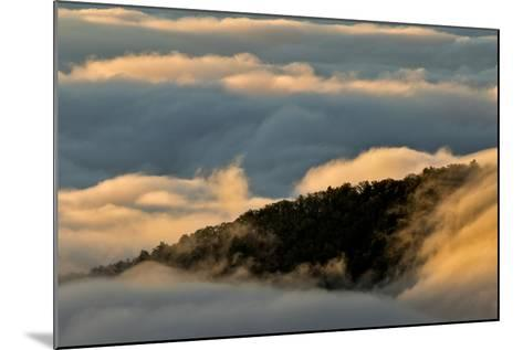 Sunrise and Mountain Mist, North Carolina-Adam Jones-Mounted Photographic Print