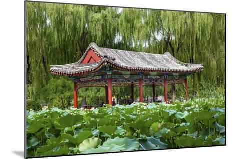 Red Pavilion Lotus Pads Garden Temple of Sun City Park, Beijing, China Willow Green Trees-William Perry-Mounted Photographic Print