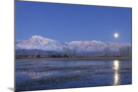 California, Bishop. Full Moon over Sierra Crest-Jaynes Gallery-Mounted Photographic Print
