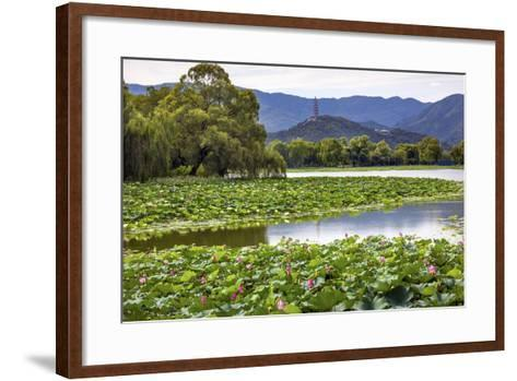 Yue Feng Pagoda Pink Lotus Pads Garden Reflection Summer Palace, Beijing, China-William Perry-Framed Art Print