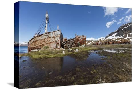 South Georgia Island, Grytviken. Abandoned Whaling Ships and Whaling Station Gather Rust-Jaynes Gallery-Stretched Canvas Print