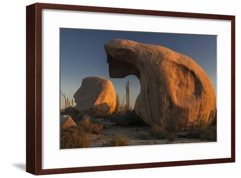 Mexico, Baja California. Boojum Trees and Boulder Formations at Sunset Near Catavina-Judith Zimmerman-Framed Art Print