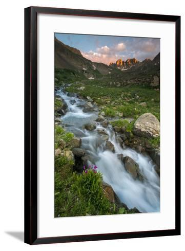 Colorado, Rocky Mountain Sunset in American Basin with Stream and Alpine Wildflowers-Judith Zimmerman-Framed Art Print